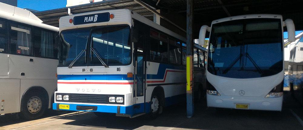 School Bus Hire Sydney, School Bus Hire Sydney School Bus Hire Sydney, School Bus Hire Sydney, School Bus Hire Sydney, School Bus Hire Sydney